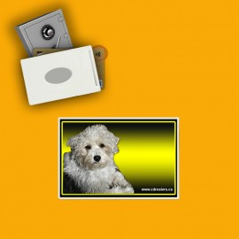 RFID shielded single card holder image dog